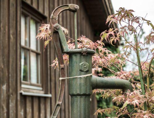 Ratgeber: Homespot für den Garten – diese Angebote sind empfehlenswert